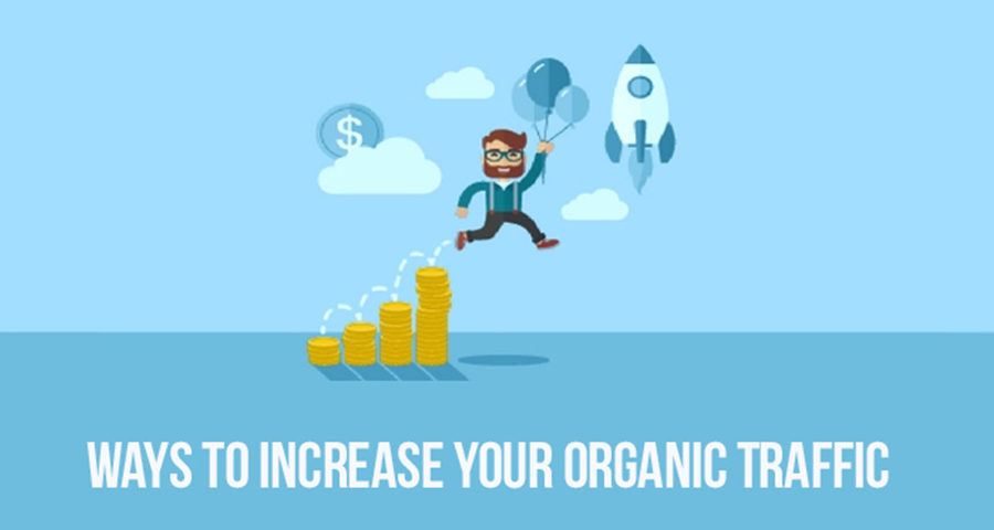 Organic Traffic Generation For Your Website – Potential Tips.